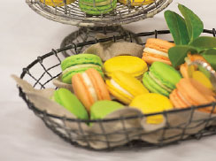 Macaroons_donorsalute_244p